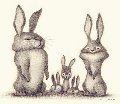 rabbit_family