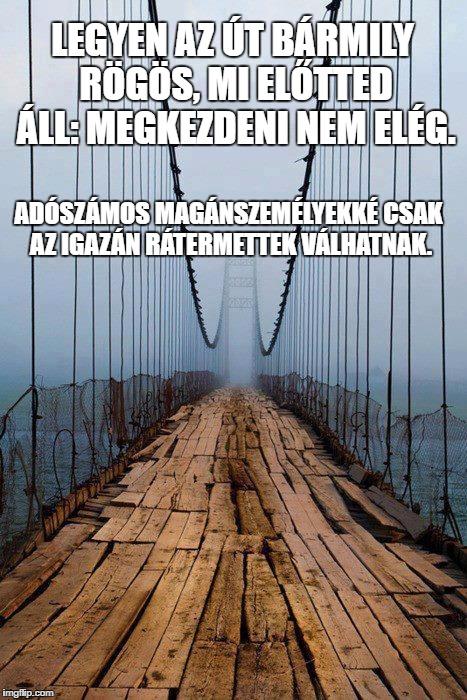 adoszamosmsz_meme