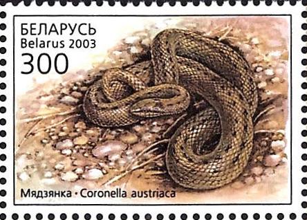 2003._Stamp_of_Belarus_0498